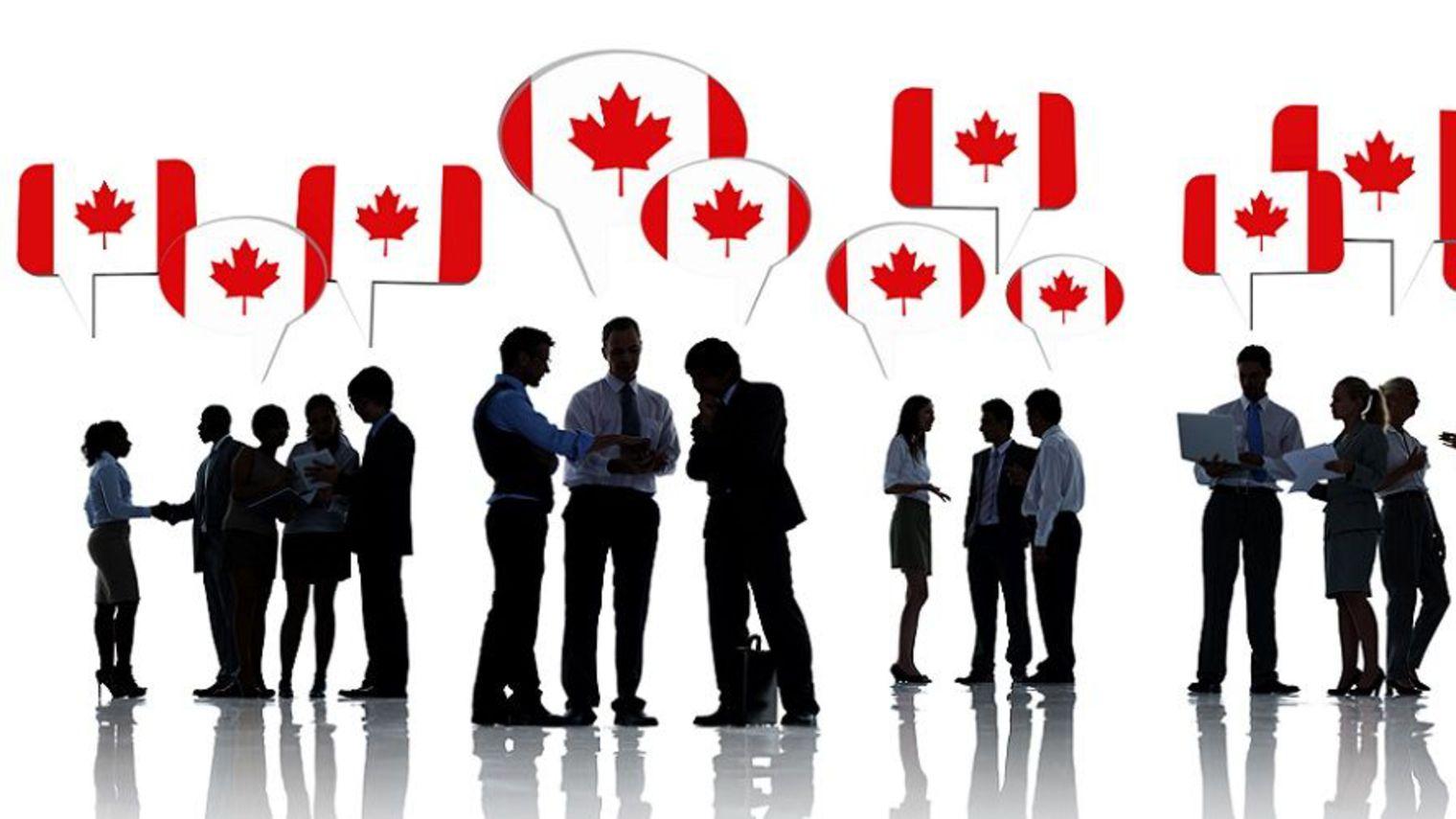 Bourses d'étude gratuites au Canada de King's University